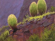 Desert Art Prints - Barrels Print by Cody DeLong