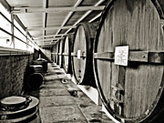 Wine Vineyard Photos - Barrels of Pleasure by Douglas Barnard