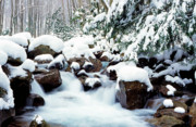 Rushing Stream Acrylic Prints - Barrenshe Run in Winter Acrylic Print by Thomas R Fletcher