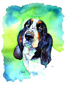 Basset Posters - Basett Hound Poster by Christy  Freeman