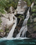 Beautiful Scenery Paintings - Bash Bish Falls by Susan Moore