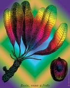 Woodcuts Digital Art - Basia Plant by Eric Edelman