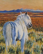 Mustang Paintings - Basin Glory by Melody Perez