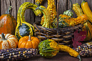 Baskets Posters - Basket full of gourds Poster by Garry Gay