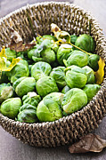 Sprouts Posters - Basket of brussels sprouts Poster by Elena Elisseeva