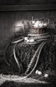 Barn Art - Basket of eggs on a bale of hay by Sandra Cunningham