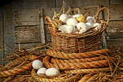 Rustic Metal Prints - Basket of eggs on straw Metal Print by Sandra Cunningham