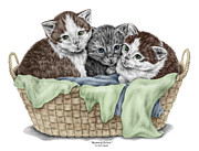 Basket Drawings Prints - Basket of Kittens - Cats Art Print color tinted Print by Kelli Swan