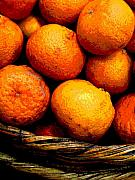 Food Prints - Basket of Oranges by Darian Day Print by Olden Mexico