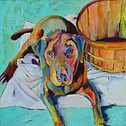 Chocolate Lab Framed Prints - Basket Retriever Framed Print by Pat Saunders-White