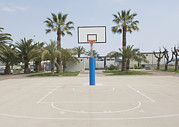 Basketball Court Prints - Basketball Court With Palm Trees Arma Print by Iain  Sarjeant