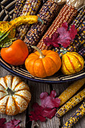 Gourds Posters - Basketful of autumn Poster by Garry Gay