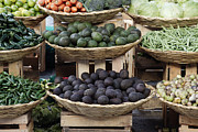 Groceries Framed Prints - Baskets of Fruits & Vegetables Framed Print by Jeremy Woodhouse