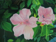 Florida Flowers Pastels Prints - Basking in the sun Print by Diane Larcheveque