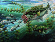 Fish Underwater Painting Originals - Bass Chasing Shads by Bob Crawford