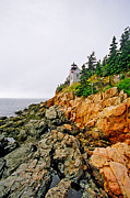 New England Lighthouse Prints - Bass Harbor Head Lighthouse Print by Joann Vitali