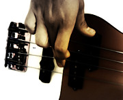 Bassist Metal Prints - Bass Play  Metal Print by Steven  Digman