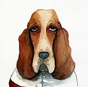 Hounds Framed Prints - Basset Hound Framed Print by Leanne Wilkes