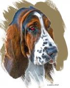 Akc Digital Art - Bassett Hound by Larry Linton