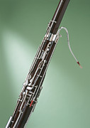 Wind Instrument Photos - Bassoon by Datacraft Co Ltd