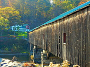 Wooden Structures Prints - Bath Covered Bridge Print by Tina Zachary