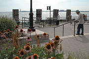 Battery Park Framed Prints - Battery Park Framed Print by Mark Gilman