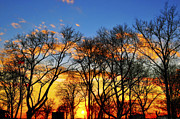 Battery Park Framed Prints - Battery Park Sunset Framed Print by Randy Aveille