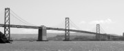 Bay Bridge Posters - Bay Bridge in Black and White Poster by Carol Groenen