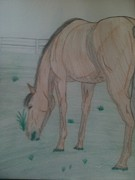 Grazing Horse Originals - Bay Horse Grazing by Elise Parr