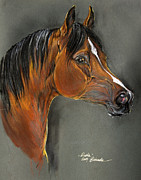 Bay Pastels Prints - Bay Horse Portrait Print by Angel  Tarantella