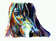 Custom Horse Portrait Prints - Bay Horse Portrait Print by Christy  Freeman