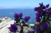 Floral Art Originals - Bay of Naples by Terence Davis