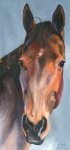 Bay Horse Drawings - Bay Royalty by Susan A Becker