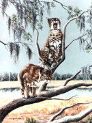 Wildife Painting Framed Prints - Bayou Bobcats Framed Print by DiDi Higginbotham