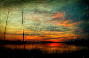 Joan Mccool Prints - Bayou Colors Print by Joan McCool