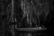 Bayou Prints - Bayou Dreams Print by Ron Jones