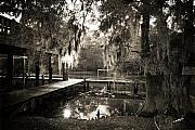 Fishing Dock Posters - Bayou Evening Poster by Scott Pellegrin