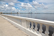 Tampa Bay Framed Prints - Bayshore Boulevard Balustrade Framed Print by Carol Groenen