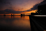 Bayshore Boulevard Prints - Bayshore Lights Print by David Lee Thompson