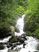 British Columbia Photo Originals - BC Mountain Stream by Reb Frost
