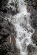 B.c. Waterfalls  Posters - B.C. Waterfalls 5 Poster by David  Naman