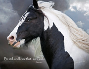 Equine Digital Art Posters - Be Still and Know that I Am Poster by Terry Kirkland Cook