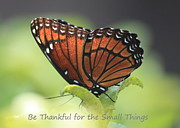 Bright Side Posters - Be Thankful Poster by Carol Groenen