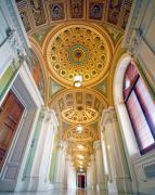 Library Of Congress Photos - Be Wise by Mitch Cat