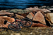 Maine Ocean Posters - Beach Bike Poster by Tom Prendergast