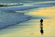 Cyclist Posters - Beach Biker Poster by Carlos Caetano