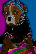 Boxer Digital Art Posters - Beach Bum Poster by Tisha McGee