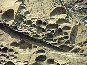 Holes In Sandstone Art - Beach Craters by Wendy McKennon