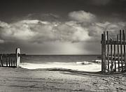 White And Black Landscapes Posters - Beach Fence - Wellfleet Cape Cod Poster by Dapixara Art