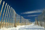 Beach Fence Photo Posters - Beach fence and snow Poster by Matt Suess